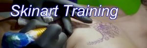 Skinart Unique 33 Step tattoo training Program