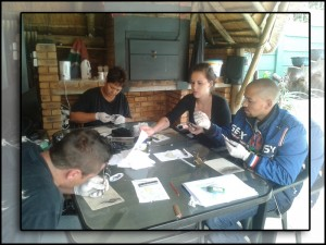 TATTOO TRAINING IN EDENGLEN